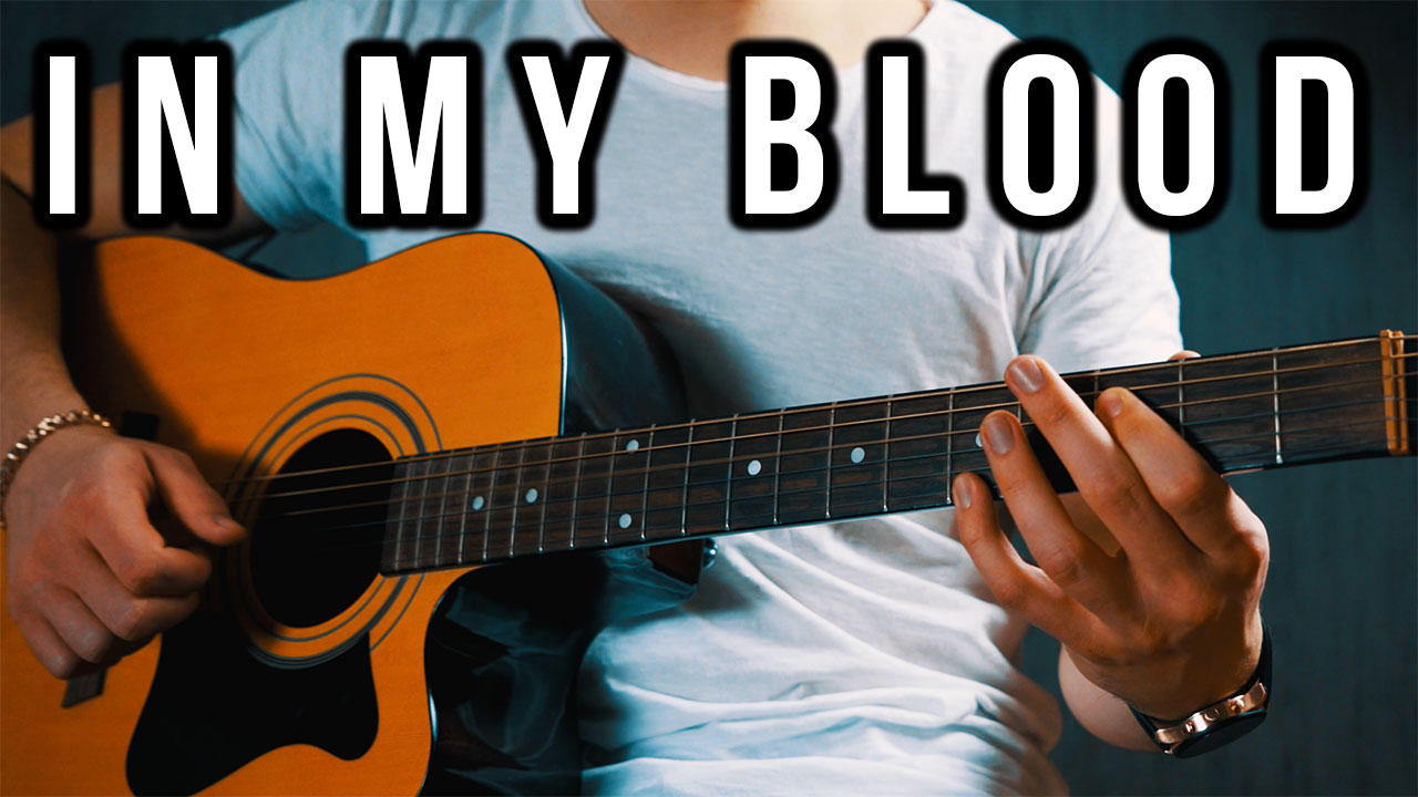 Shawn Mendes In My Blood Guitar Lesson